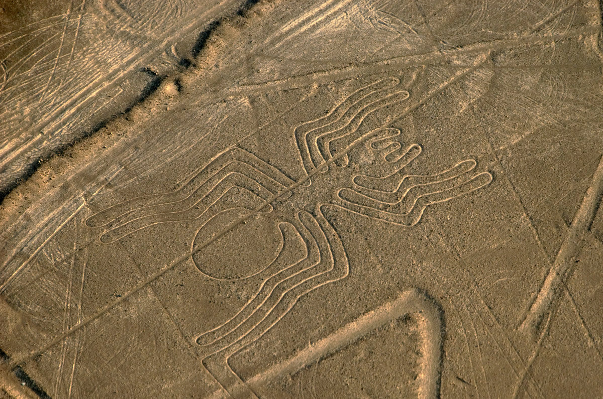 Nazca Lines Spider taken on an overflight tour